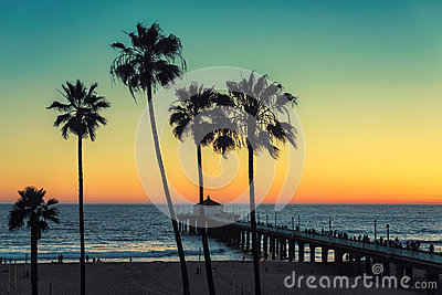 Palm trees at California Beach. Vintage processed.