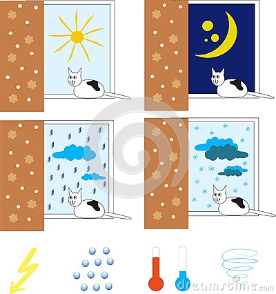 Weather with the black and white cat, he sits on the window