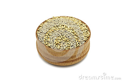 Seeds handful canary grass in a wooden plate