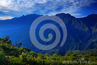 Moutain tropical forest with blue sky and clouds,Tatama National Park, high Andes mountains of the Cordillera, Colombia