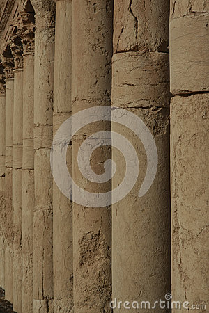 Row of Columns in Palmyra
