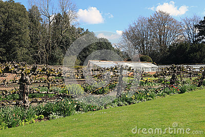 Walled Garden at Hinton Ampner on a spring day