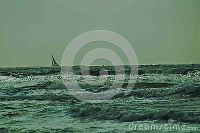 Sail boat on waves