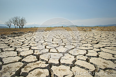 Global warming issue, ground land are dry, drought conditions