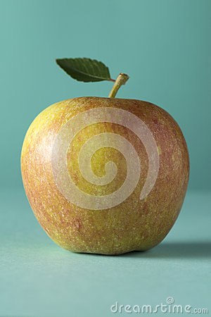 A single red cox apple on a grey background