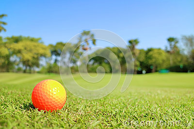 Golf ball on green with beautiful nature scene.