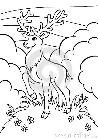 Coloring pages. Animals. Little cute deer.
