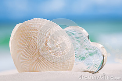 White sea shell  with heart glass on beach and sea blue backgrou