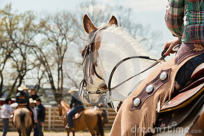In the saddle horse on Western race, beautiful paint horse in a barrel racing event at a rodeo.