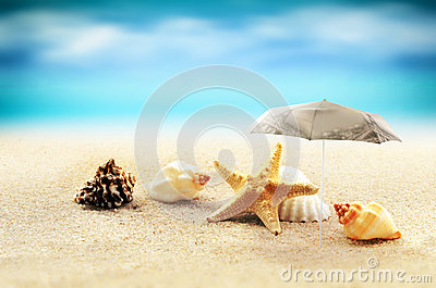 Starfish with parasol and shells on the beach