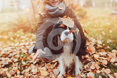 Child girl playing with her dog in autumn garden on the walk