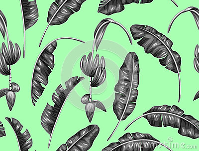 Seamless pattern with banana leaves. Decorative image of tropical foliage, flowers and fruits. Background made without