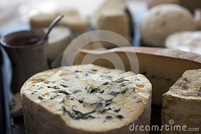 France,Auvergne, cheese