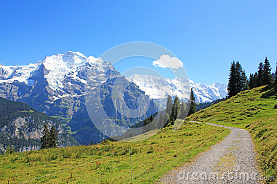 Hiking path with beautiful mountain panorama view with the famous Jungfrau in Switzerland