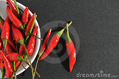 Hot and Spicy 4