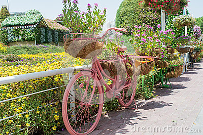 Pink bicycle decorated with colourful flowers in the pots