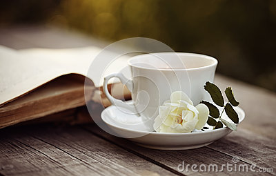 Old open book and a cup with a white wild rose