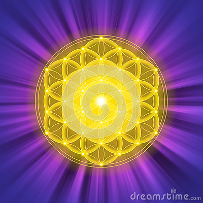 Bright golden Flower of Life on purple light rays