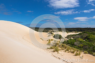 High sand hill ridge and drought tolerant plants with blue sky a