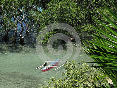 Traditional Jukung fishing boat in a mangrove at Bunaken Island, North-Sulawesi, Indonesia