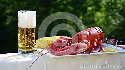Jumbo red lobster and chilled fizzy beer