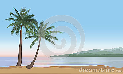 Palm tree on the ocean beach. Nature floral landscape Tropical b