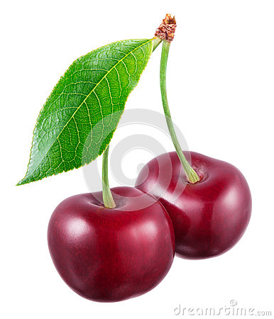 Two fresh cherries with leaf isolated on white background