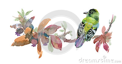 Meadow with flowers and bird. Watercolor illustration on white background.