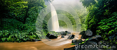 Waterfall cascade hidden in tropical jungle on the background green tree forest nature and mountain
