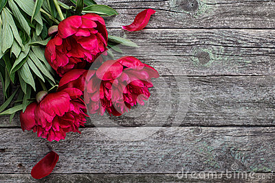 Pink peonies flowers on rustic wooden background. Selective focus