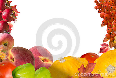 Autumn collage card with fruits and leaves