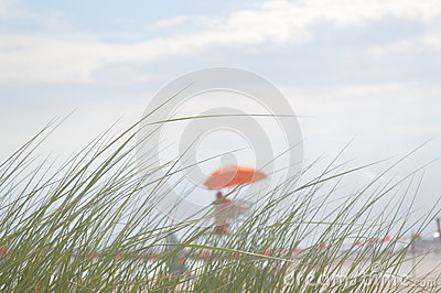 The dull view of the beach and lifeguard through the grass