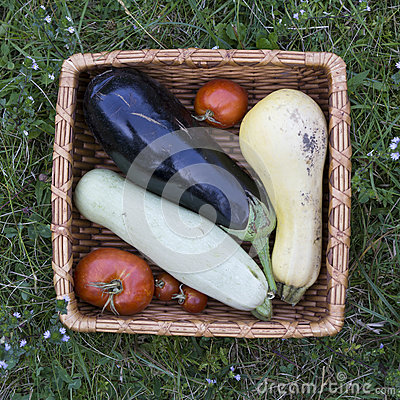 Organic vegetables in basket