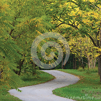 Walnut Trees In Autumnal Park, Large Detailed Vertical Landscaped Autumn Path Scene, Twisting Tarmac Walkway, Winding Asphalt Road
