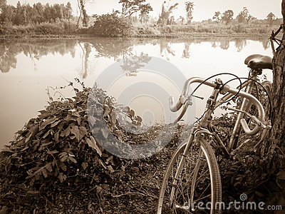 Vintage bicycle style near the river