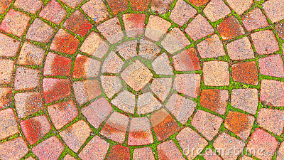 Brick Circle Pattern on the Sidewalk