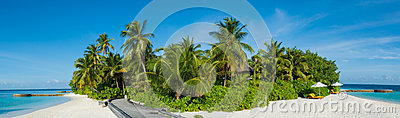 Tropical island beach panorama view with palm trees at Maldives