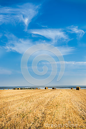Large Piles of Hay Bales