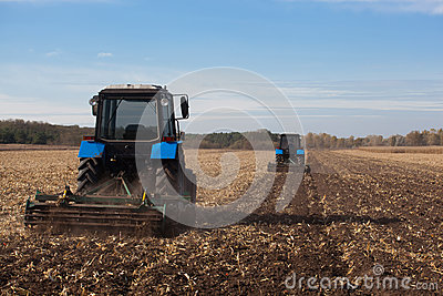 The sloping field. Two large blue traktor plow plowed land after harvesting the maize crop