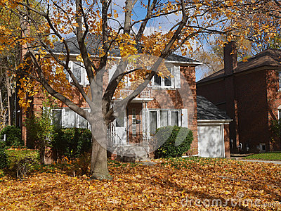 House with maple tree and fall colors