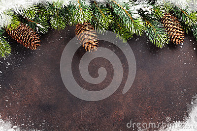 Christmas background with snow fir tree