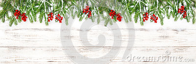 Christmas decoration Floral holidays banner Evergreen tree branches