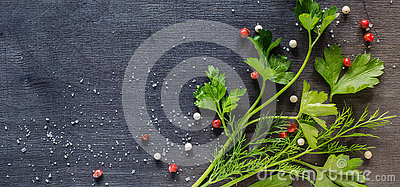 Fragrant fresh parsley and dill arranged on a diagonal  dark background.