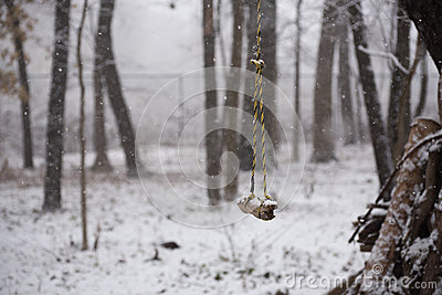 Swing in a park at winter