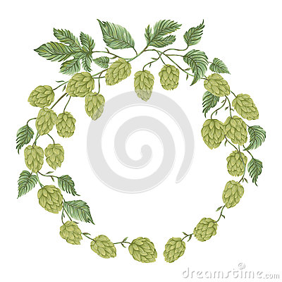 Wreath with hops. Floral composition with hop cones, leaves and branches.