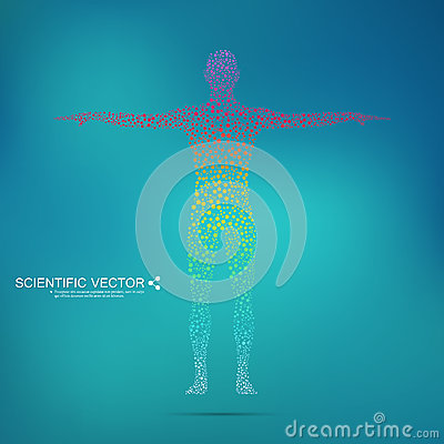 Structure molecule of man. Abstract model human body DNA . Medicine, science and technology. Scientific Vector for your