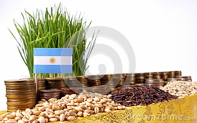 Argentina flag waving with stack of money coins and piles of seeds