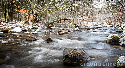 Winter river scene in the forest with snow