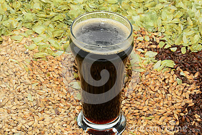 Stout in taster glass