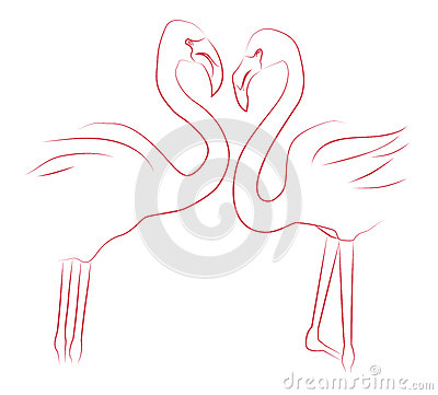 Contour illustration of two lovers flamingos.